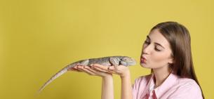Особенности содержания экзотических животных в доме